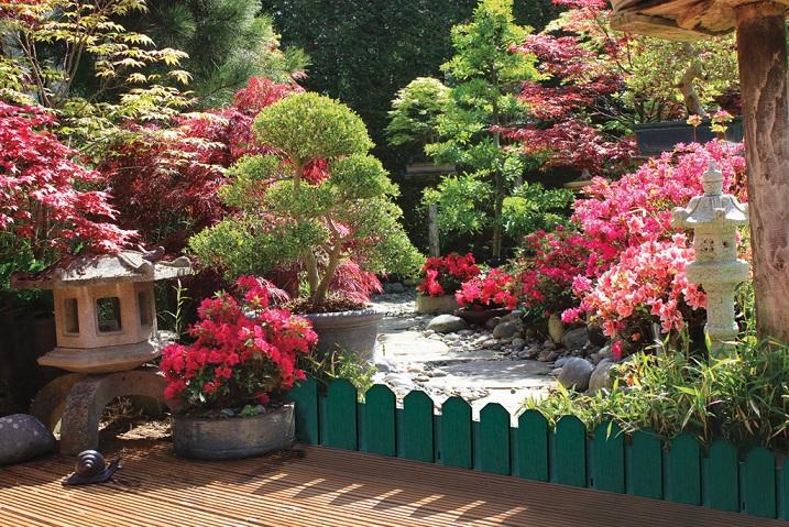 Декоративна ограда Nortene SIERRA BORDER