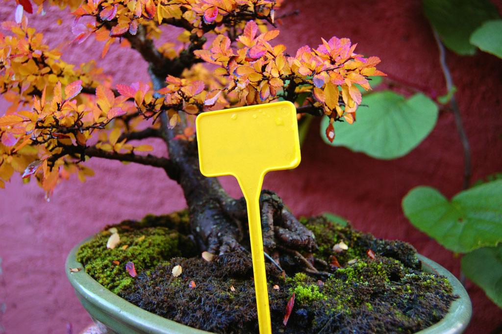 Табелка за цветя Nortene LABEL 15